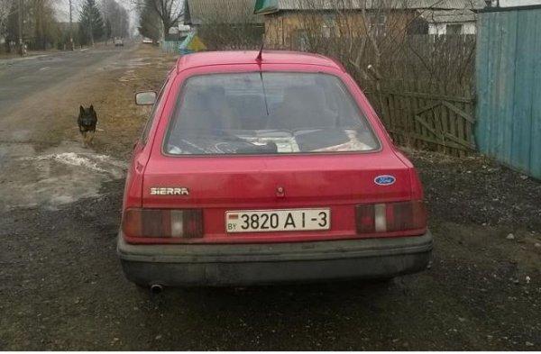 Форд сиерра-1984
