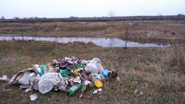 """Субботник ко по-Рогачёвски: коммунальники """"забыли"""" про собранный мусор"""