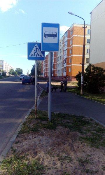В редакцию прислали фото остановок по улице Гоголя