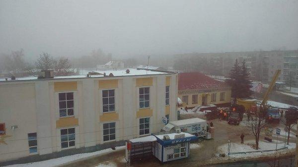 """В Рогачёве хотят спилить красивые """"голубые ели"""" около здания """"Соцзащиты"""": они загораживают фасад здания"""