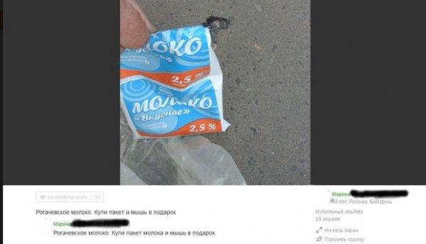 Рогачевский МКК подал в суд на трех женщин, которые опубликовали снимки крыс в молоке