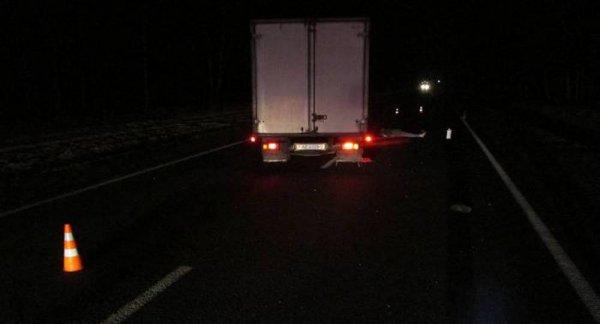 Украинка погибла под колесами грузовика в Рогачевском районе
