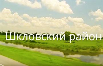 """Опубликовано видео: Беларусь спустя пять лет после подписания """"декрета номер три"""""""
