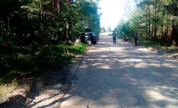 Ехал на рыбалку, а попал в ДТП. В Рогачевском районе нетрезвый водитель «Нивы» въехал в дерево