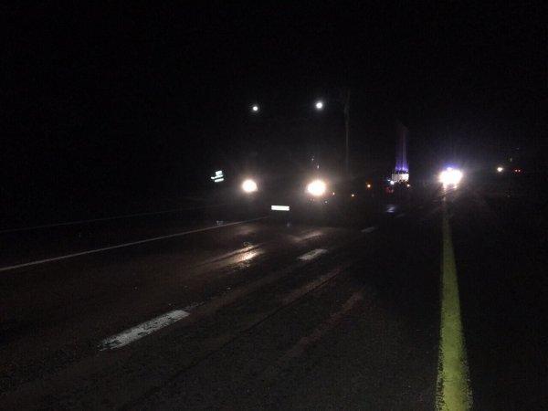 В Гомельском районе под колесами грузовика погиб пешеход