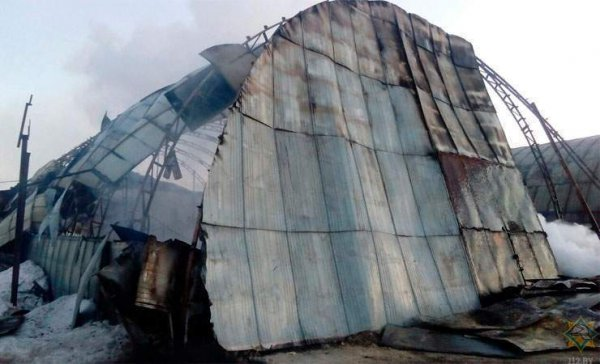 Видеофакт: в Рогачеве горела пилорама, огонь повредил два ангара
