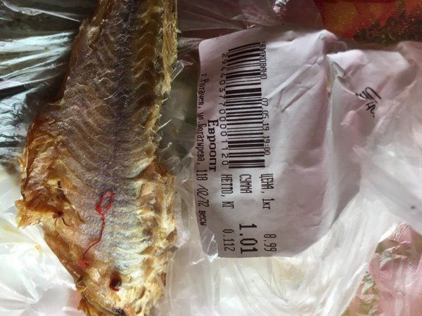 Шок: В Евроопте продают рыбу с живыми червями
