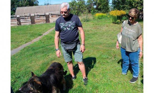 Собаки-спинальники, безлапый кот Васенька и Разноглазая. Итальянские волонтеры навестили подопечных в рогачевском приюте для животных