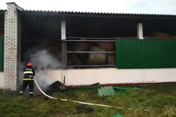 В Крушиновке неизвестные «мстители» пытались сжечь местный колхоз