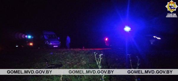 В Рогачевском районе велосипедист погиб под колесами микроавтобуса — фото