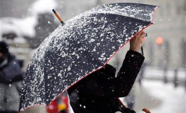 Мокрый снег и около нуля. Погода в Рогачёве на Новый год и ближайшую неделю