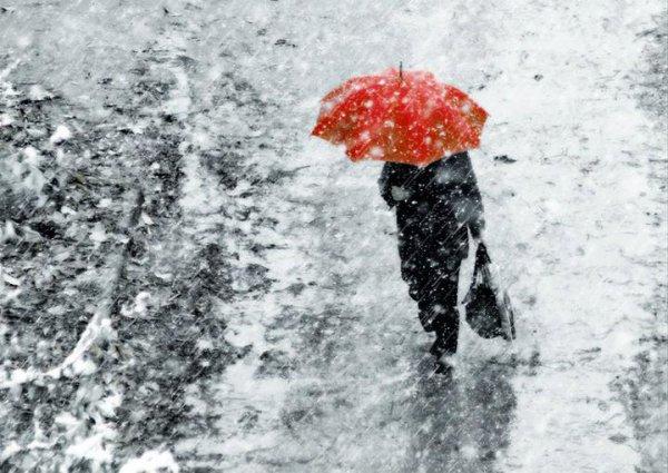 Снова осень. Погода в Рогачеве на неделе