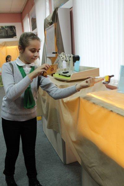 В Рогачевском музее работает выставка «Элементариум» - фоторепортаж