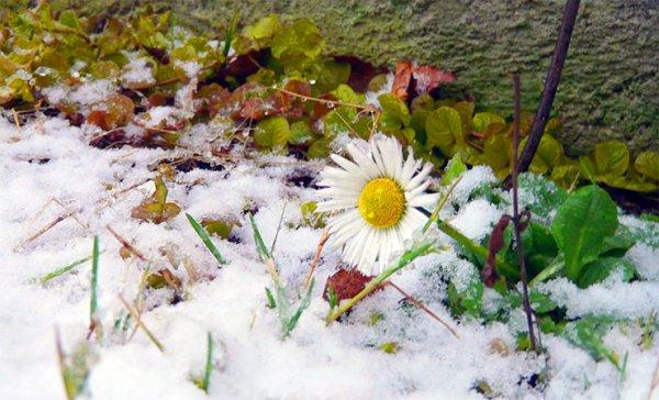 Теплая зима сэкономила Беларуси 15 млн долларов на коммуналке