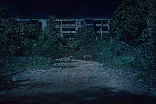В Беларуси сняли триллер о «Чернобыльской зоне отчуждения»
