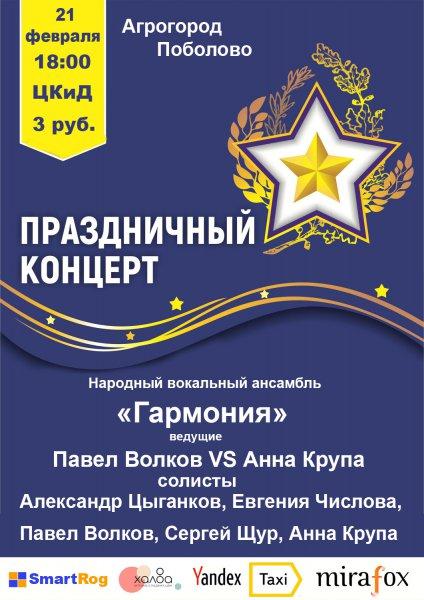 Концерт к Дню Защитника Отечества в Поболово. 12 февраля. 18-00.