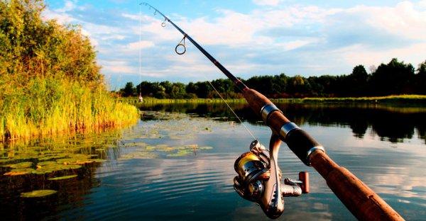 В Рогачеве запрет на рыбалку перенесут на декаду раньше обычного