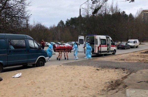 Число зараженных COVID-1 в Беларуси выросло до 81 человека. Среди них - ребенок 3 лет