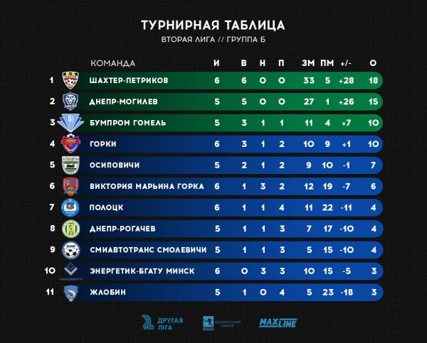 13 июня ФК «Днепр Рогачёв» примет на своём поле лидера чемпионата Петриковский Шахтёр