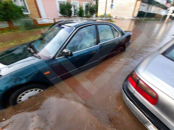 Видеофакт: После дождей Рогачёв превратился в Венецию