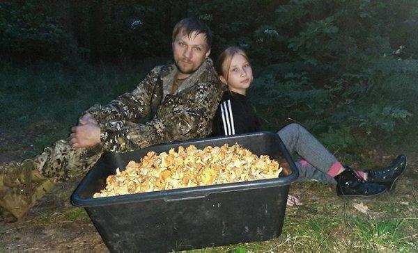 Фотофакт: Сезон сбора лисичек в Гомельской области в самом разгаре - семья собрала 90 литров лисичек всего за 3,5 часа