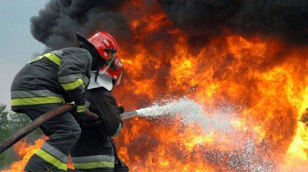 В Греции произошел масштабный лесной пожар