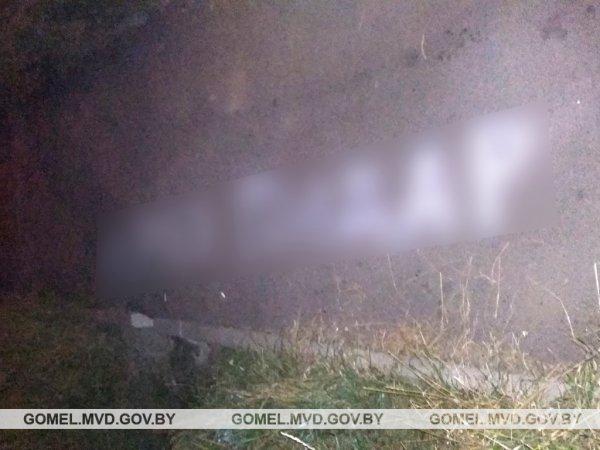 Рогачёвец оскорбил власть надписью на тротуаре,  мужчина получил штраф — фотофакт