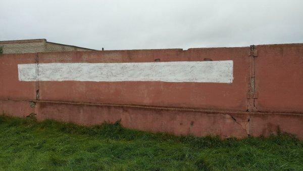 В Рогачёве появилась надпись с требованием прекратить бить людей – фотофакт