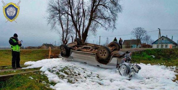 Жуткое ДТП в Довске: при столкновении с деревом мужчину выбросило из салона автомобиля, он погиб