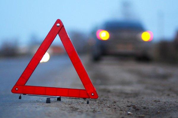 В Рогачевском районе Renault сбил двух мужчин