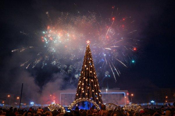 Новогоднюю ёлку в Рогачёве установят до конца недели