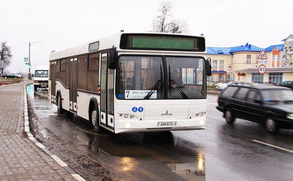 В Рогачёве временно отменяют некоторые автобусные маршруты, в связи с критической ситуацией на дорогах