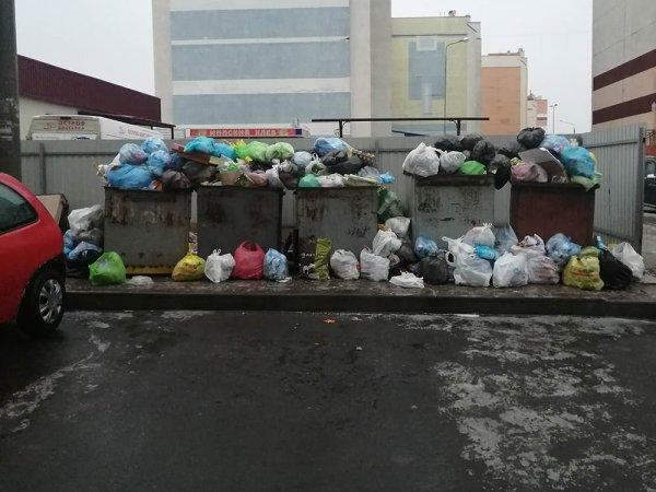 Фотофакт: КЖЭУП «Рогачёв» перестал вывозить мусор. Дворы завалены пакетами с отходами