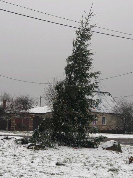 Фотофакт: власти Рогачёва жестоко поиздевались над жителями посёлка «Космос»