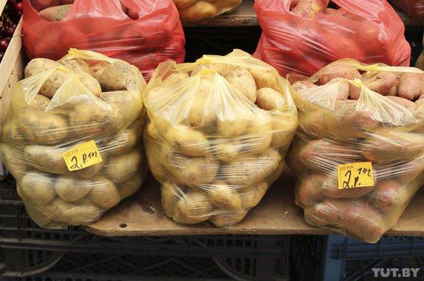 Минсельхозпрод Беларуси рассказал, почему в Беларуси резко подорожали овощи