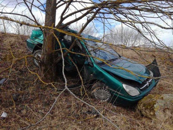 В Ошмянском районе легковушка врезалась в дерево