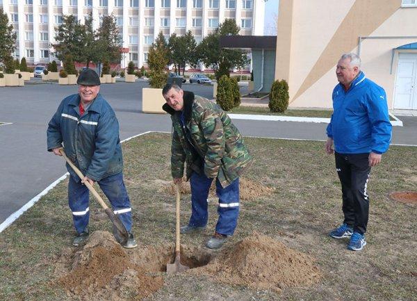 Республиканский субботник пройдёт в Рогачёве 17 апреля