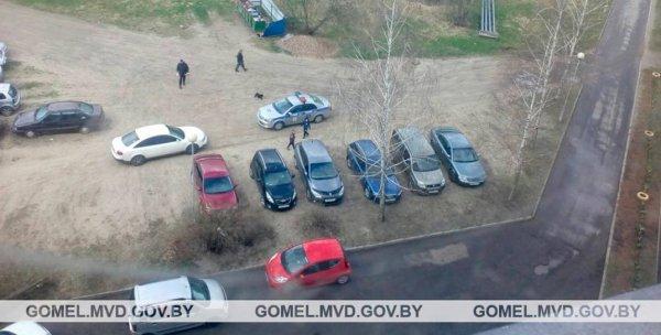 Двухлетняя девочка, которую сбил автомобиль в Приднепровском находится в реанимации