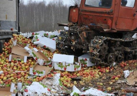 В России арестовано 172 тонны фруктов из Беларуси
