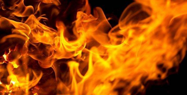 В Лоевском районе на пожаре сгорел пенсионер