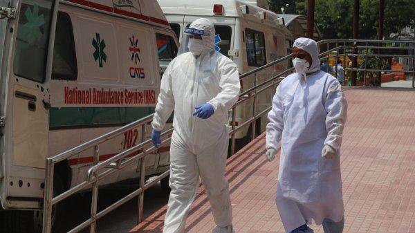 ВОЗ заявила, что смертность от коронавируса COVID-19 в мире вышла на плато