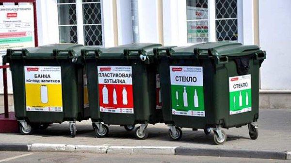 На борьбу с мусором в России хотят потратить миллиард рублей