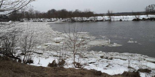 Тела утонувших в январе мужчин нашли в реке Припять в Гомельской области