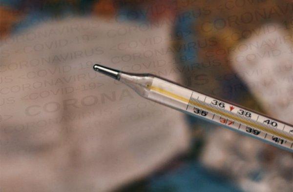 Количество случаев заражения и смерти от COVID-19 в мире за неделю снизилось на 4%
