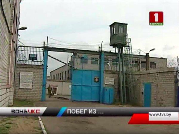 Политических заключённых в Беларуси начали помечать жёлтыми бирками