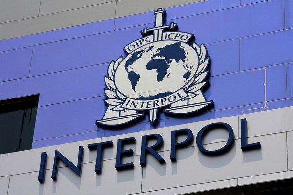 Беларусь хотят исключить из состава Интерпола за захват самолёта
