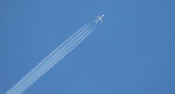 Авиатрафик через Беларусь сократился на 40% после введения санкций