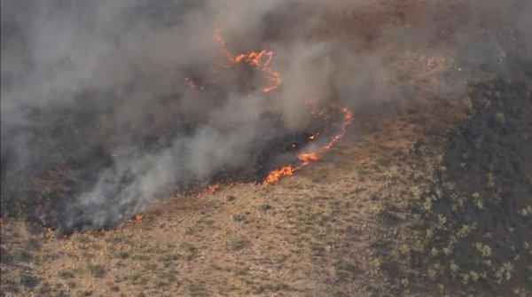В Аризоне из-за лесных пожаров эвакуированы тысячи человек