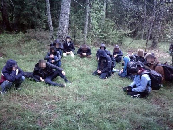 В Литве задержана ещё одна группа нелегальных мигрантов из Беларуси