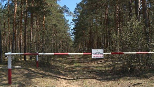 В ближайшие дни в Рогачёвском районе введут запрет на посещение лесов